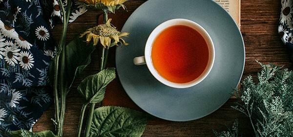 紅茶ポリフェノール