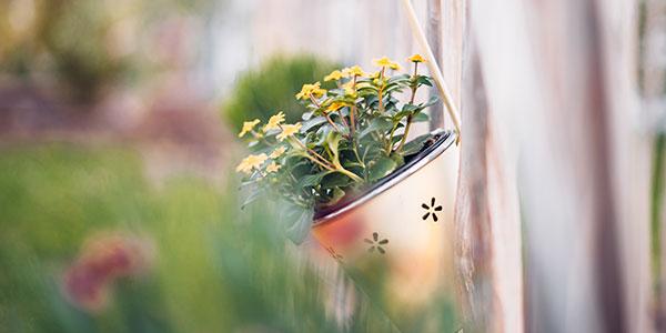 テラスハウス物件には小さな庭がついていることが多い